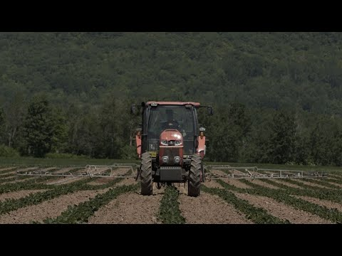 Video: Trailer for Real Farm Lives season two.