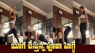 Pooja Hegde latest yoga video, beauty secret of 'Butta Bom..