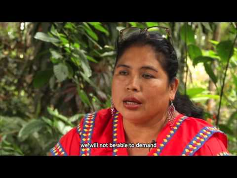 Listening to the Forest in Panama.  UN-REDD Programme Active Listening Process - Women's Channel