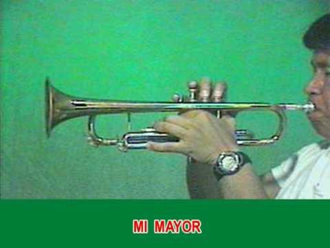 EL NEGRO JOSE en  las 7 Escalas Musicales TROMPETA SIb PP LEVI GLZ.