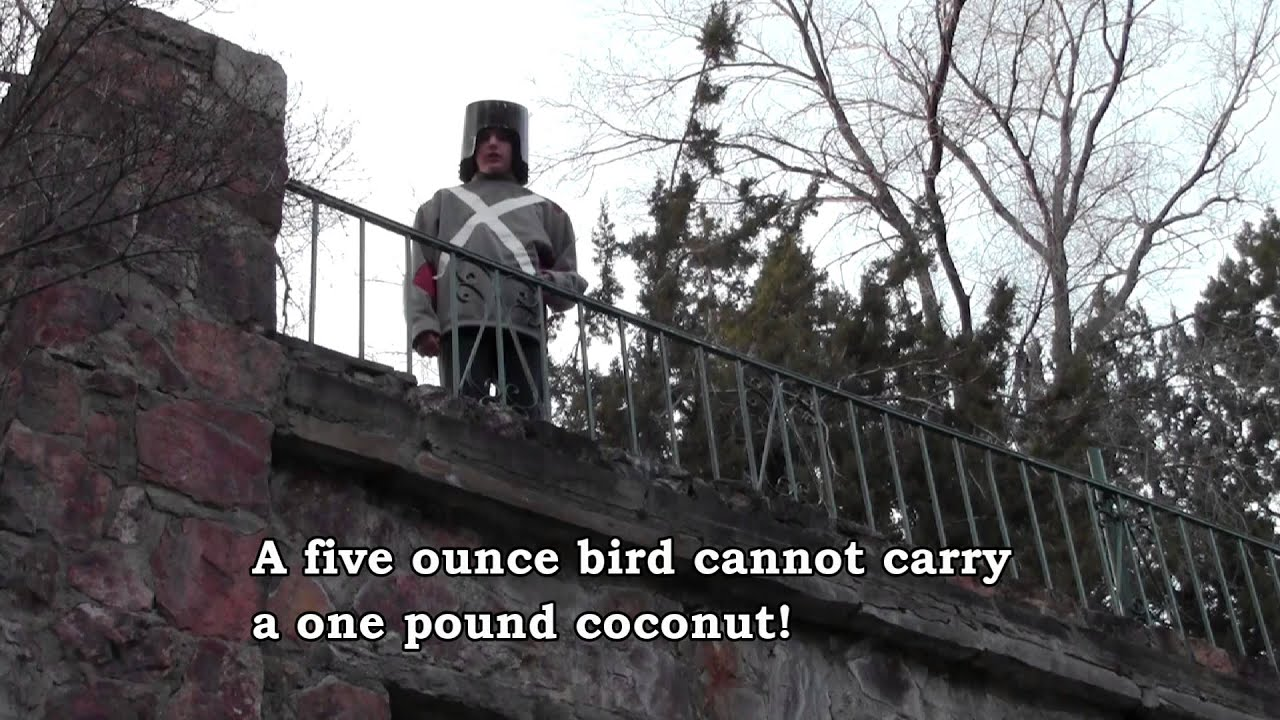 Monty Python Swallow Quote 102