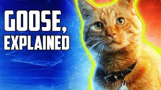 Captain Marvel: Goose's Secret, Explained
