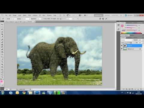 Photoshop CS5  - Puppet Warp