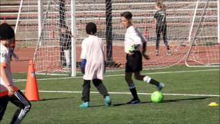 11 Year old soccer sensation Gavin Scavino