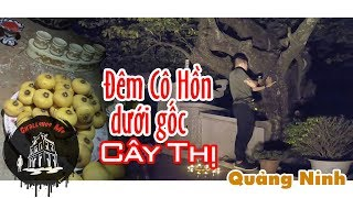 Đêm Cô Hồn Dưới Gốc Cây Thị ở Móng Cái, Quảng Ninh [Phần 2]