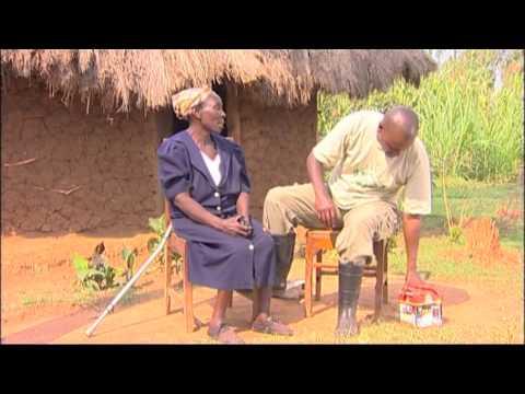 dlight Shamba ShapeUp 4 Mary's Farm, Maseno