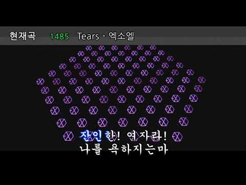 [171126 EℓyXiOn] 생일축가로 2만2천명에게 티얼스 떼창받는 찬열