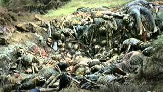 Rwanda   Opération Turquoise   part  12