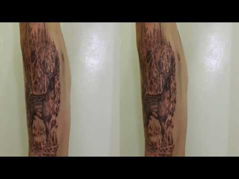 Tasmanian Fallow Deer Stag Rib Tattoo on Jack Longstaff by Fluntboy ( 3D sbs video)
