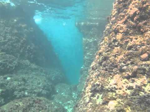 Underwater canyons near Crna punta, Krnica - YouTube