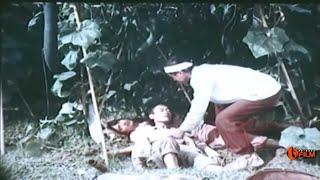 Phim Hài Việt Nam Cũ Hay Nhất  Xem Đi Xem Lại Vẫn Không Thấy Chán !!!