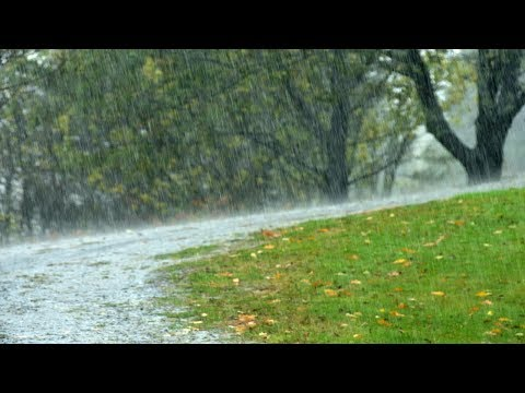 White Noise, Gentle Rain, Relaxing Sounds, Nature Sound, Sleep Sounds, Insomnia Help, ☯3326