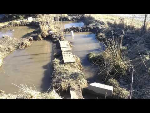 9March16 :: Permaculture Series :: More Ponds and Swales
