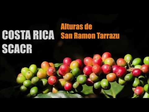 Costa Rica SCACR Altura de San Ramon Tarrazu - Coffee of the Sandalj Traceability Project