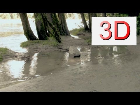 3D-Video: River Beach Relaxation #8