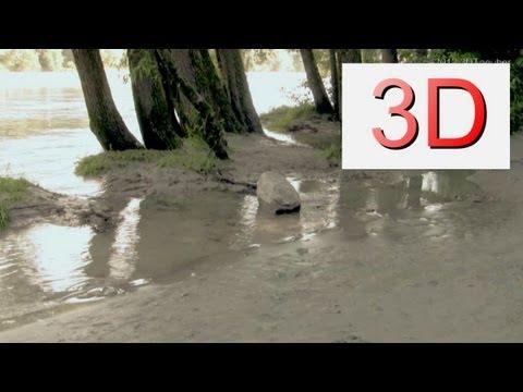 3D-Video: River Beach Relaxation #8