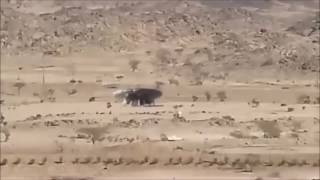 UFO Sightings 2016 Ufo With Aliens Caught Landing In Desert