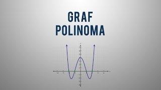 Graf polinoma