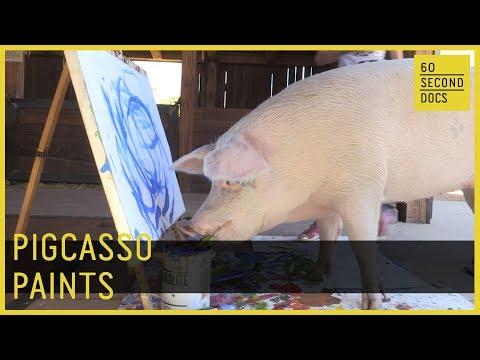 Pigcasso Paints // 60 Second Docs
