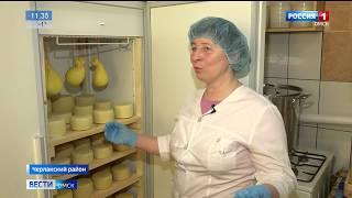 Порядка 10 сортов сыра производят в одном из личных подсобных хозяйств в Черлаке
