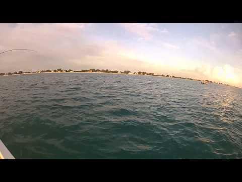 Boca Grande beach tarpon charter fishing!