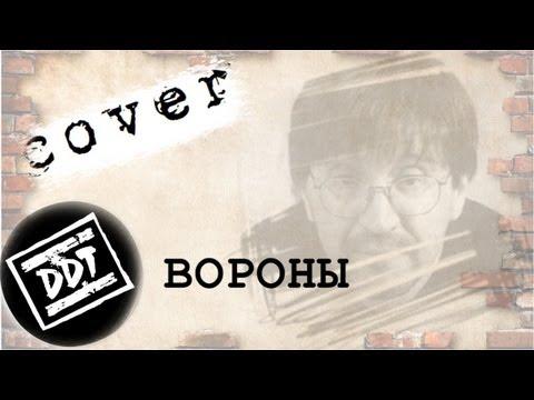 ДДТ - Вороны (cover)