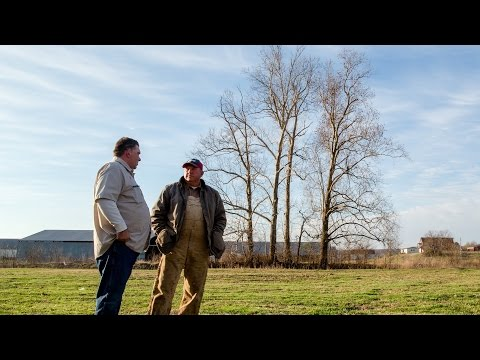 Tyson Foods Unveils Documentary Series To Show How Tyson® Chicken Products Are Made; Announces Move To No Antibiotics Ever In Its Retail Chicken