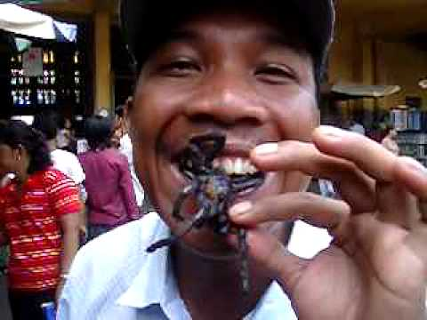 Eating spiders in Cambodia 1 - YouTube