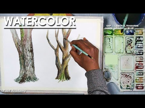 How to Paint Different Tree Stems in Watercolor
