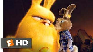 Hop (2011) - Carlos Scene (9/10)   Movieclips
