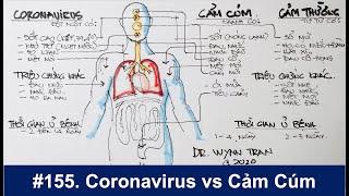 #155. Phân biệt giữa Coronavirus, cảm cúm, và cảm thường