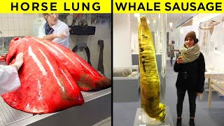 Curious Comparisons That Will Make You Look At Things Differently