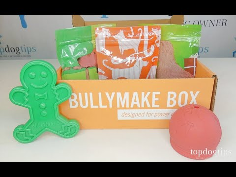 December 2020 Bullymake Dog Subscription Box Unboxing