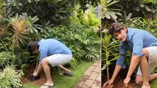 Mahesh Babu accepts 'Green India' challenge..