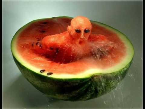 Umetnost od hrane