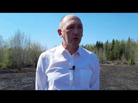 В Ухте начались лесные пожары