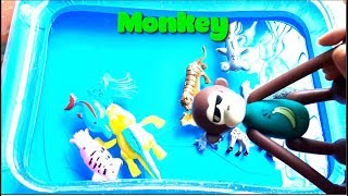 Learn Animals Names For Kids   Wild Zoo Animals Toys Baby Learn Animals Sea English For Children