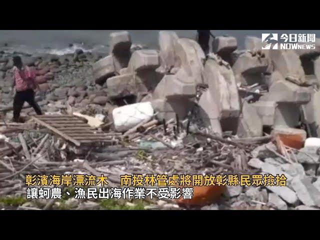 影/彰濱海岸漂流木 南投林管處將開放民眾撿拾