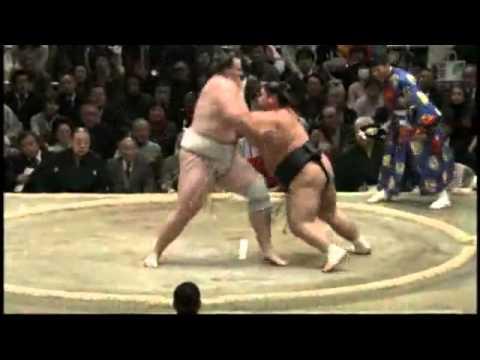 相撲力士誤