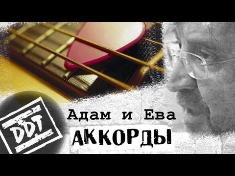 Адам и Ева ДДТ (cover) DDT