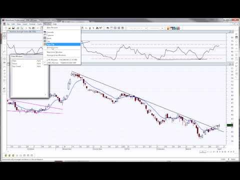 Stocks and options guru