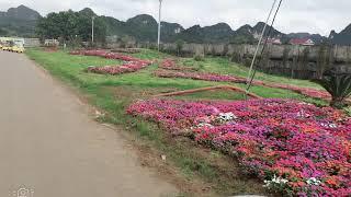 Cảnh đẹp việt Nam mà cứ ngỡ mình đang ở sứ sở Bugari