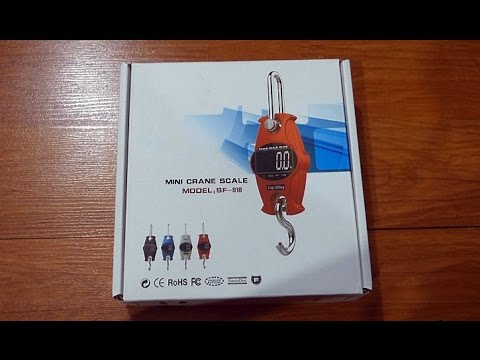 video Mini Crane Digital Scale (300 kg Capacity Hook/Hanging Type)