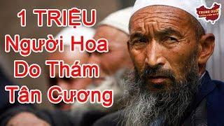 1 TRIỆU Người Hoa được Cử Đi Do Thám Tân Cương | Trung Quốc Không Kiểm Duyệt