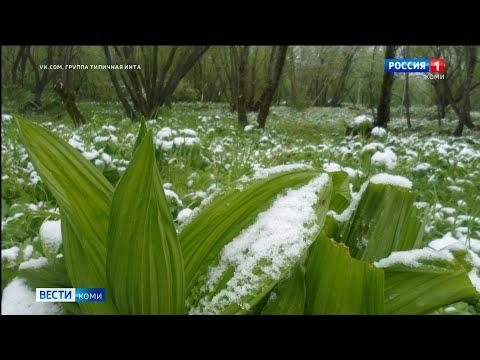 Зима летом: в Воркуте и Усинске выпал снег