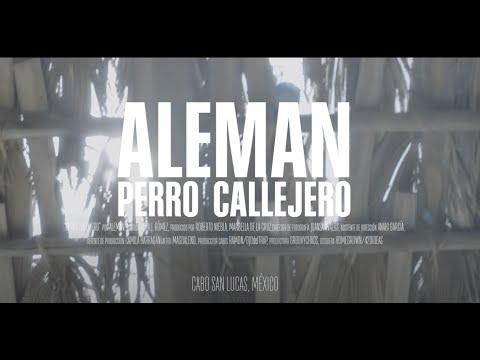 Alemán - Perro Callejero (Video Oficial)