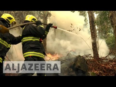 Chile: Deadly forest fires rage out of control