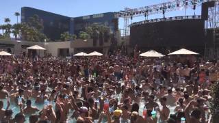Wet Republic pool party - Calvin Harris