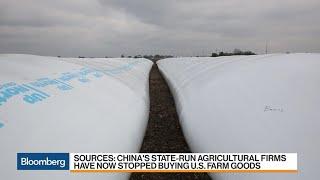 Reportes revelan que China pedirá a los compradores estatales que detengan las importaciones agrícolas de EEUU