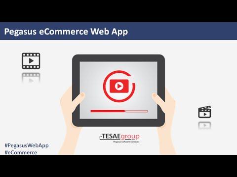 Καταχώρηση Είδους στo Pegasus ERP & αυτόματη εμφάνιση στο e-Shop σας!